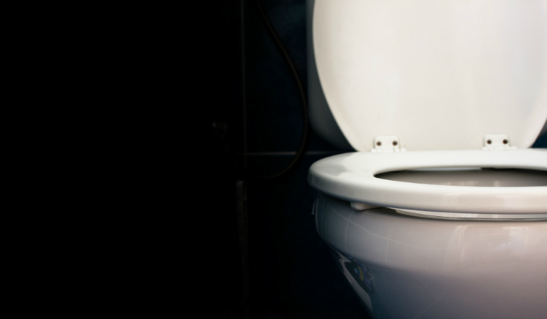 Bowel Cancer Australia_Toilet