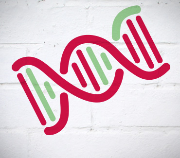 Genetic Inheritance:::Is Bowel Cancer in Your Genes